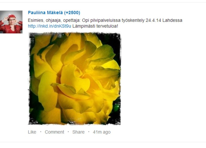 LinkedIn esimerkki Pinterest blogiin