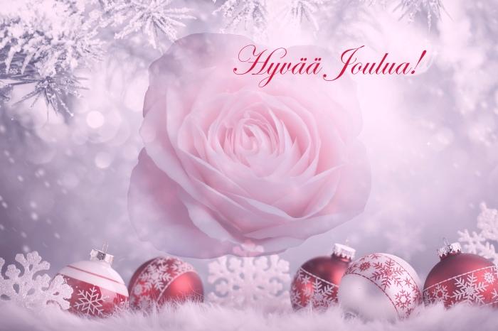 Joulu Ruusu Kortti Hyvää Joulua.jpg